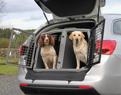 Перевозка животных (собак и кошек) на автомобиле