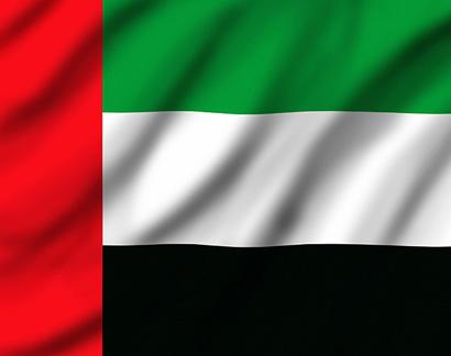 Перевозка и доставка животных (собак, кошек) в ОАЭ. Правила ввоза в Эмираты
