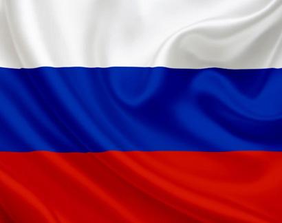 Перевозка доставка животных (собак и кошек) в Россию