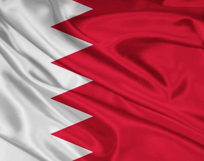 Правила ввоза животных (собак и кошек) в Бахрейн