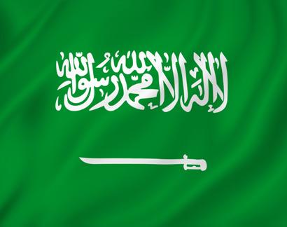 Правила ввоза животных (собак и кошек) в Саудовскую Аравию